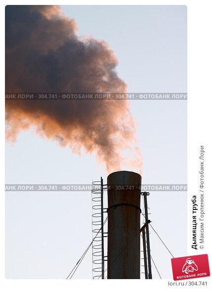 Дымящая труба, фото № 304741, снято 23 февраля 2007 г. (c) Максим Горпенюк / Фотобанк Лори