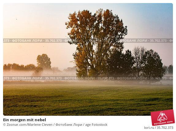 Ein morgen mit nebel. Стоковое фото, фотограф Zoonar.com/Marlene Cleven / age Fotostock / Фотобанк Лори