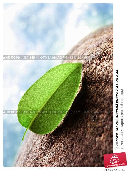 Экологически чистый листок на камне, фото № 331169, снято 18 апреля 2008 г. (c) Евгений Захаров / Фотобанк Лори