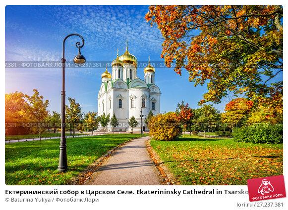 Купить «Ектерининский собор в Царском Селе Ekaterininsky Cathedral in Tsarskoe Selo», фото № 27237381, снято 24 сентября 2015 г. (c) Baturina Yuliya / Фотобанк Лори