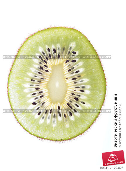 Экзотический фрукт, киви, фото № 179825, снято 12 января 2008 г. (c) Astroid / Фотобанк Лори