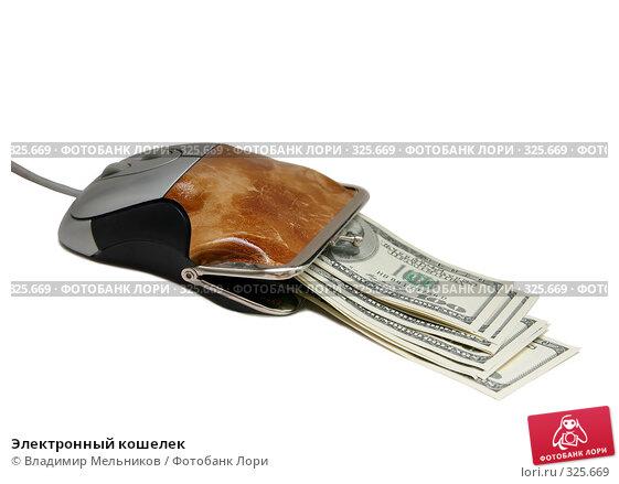 Электронный кошелек, фото № 325669, снято 16 июня 2008 г. (c) Владимир Мельников / Фотобанк Лори