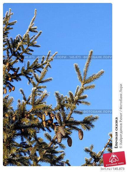 Ёлочная сказка, фото № 145873, снято 8 декабря 2007 г. (c) Хайрятдинов Ринат / Фотобанк Лори