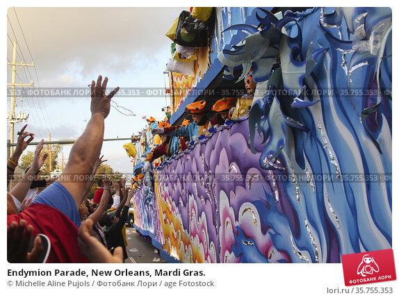 Endymion Parade, New Orleans, Mardi Gras. (2014 год). Редакционное фото, фотограф Michelle Aline Pujols / age Fotostock / Фотобанк Лори