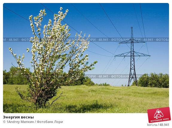 Купить «Энергия весны», фото № 48941, снято 20 мая 2007 г. (c) 1Andrey Милкин / Фотобанк Лори