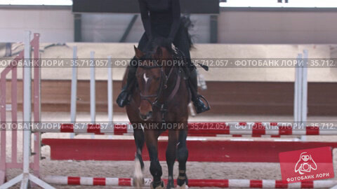 Equestrian sport - a woman in gear and black clothes jumps on a horse over the obstacles. Стоковое видео, видеограф Константин Шишкин / Фотобанк Лори
