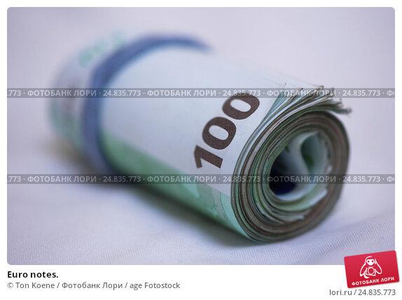 Купить «Euro notes.», фото № 24835773, снято 12 декабря 2016 г. (c) age Fotostock / Фотобанк Лори