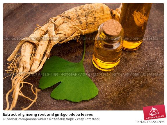 Купить «Extract of ginseng root and ginkgo biloba leaves», фото № 32544993, снято 7 декабря 2019 г. (c) easy Fotostock / Фотобанк Лори