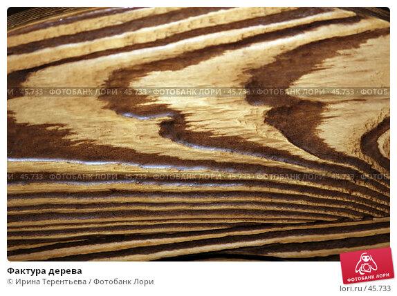 Фактура дерева, эксклюзивное фото № 45733, снято 21 апреля 2007 г. (c) Ирина Терентьева / Фотобанк Лори