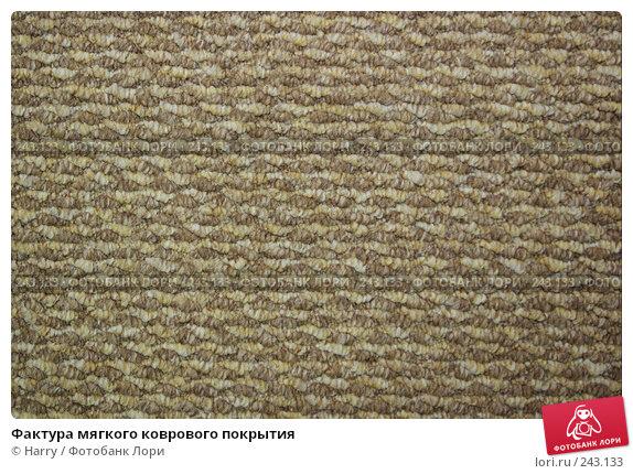 Фактура мягкого коврового покрытия, фото № 243133, снято 2 ноября 2007 г. (c) Harry / Фотобанк Лори
