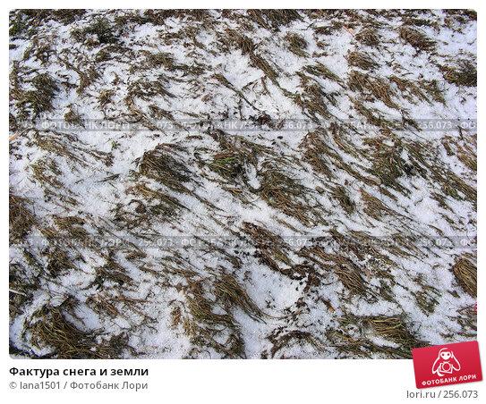 Фактура снега и земли, эксклюзивное фото № 256073, снято 5 марта 2008 г. (c) lana1501 / Фотобанк Лори