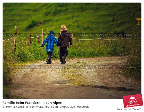Familie beim Wandern in den Alpen. Стоковое фото, фотограф Zoonar.com/Nailia Schwarz / age Fotostock / Фотобанк Лори