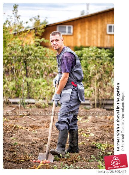 Купить «Farmer with a shovel in the garden», фото № 28305417, снято 28 августа 2016 г. (c) Евгений Ткачёв / Фотобанк Лори
