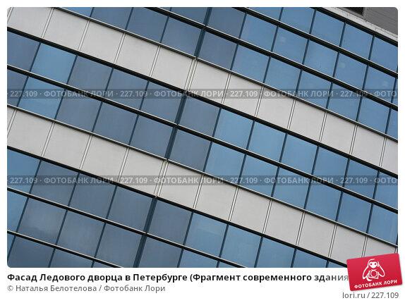 Фасад Ледового дворца в Петербурге (Фрагмент современного здания), фото № 227109, снято 16 марта 2008 г. (c) Наталья Белотелова / Фотобанк Лори