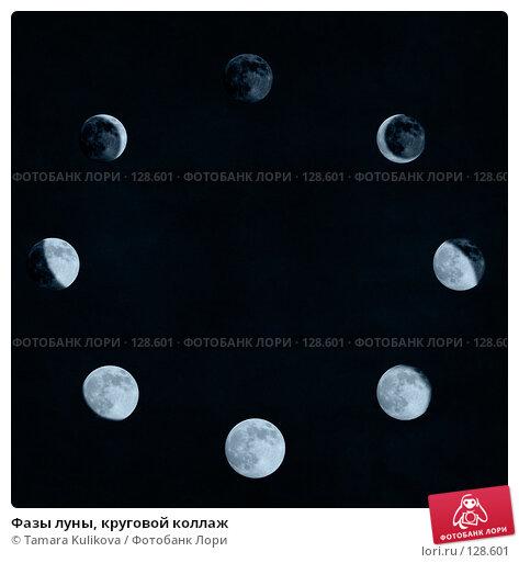 Фазы луны, круговой коллаж, иллюстрация № 128601 (c) Tamara Kulikova / Фотобанк Лори