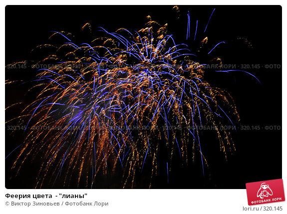 """Феерия цвета  - """"лианы"""", фото № 320145, снято 27 октября 2016 г. (c) Виктор Зиновьев / Фотобанк Лори"""