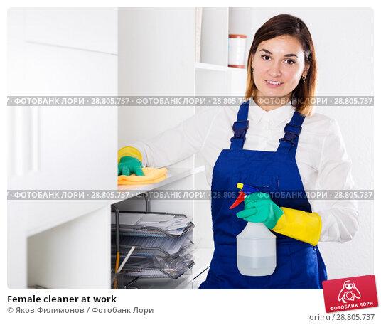 Купить «Female cleaner at work», фото № 28805737, снято 10 июля 2020 г. (c) Яков Филимонов / Фотобанк Лори
