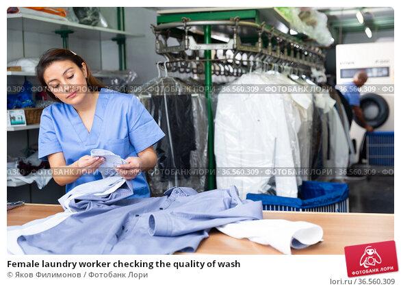 Female laundry worker checking the quality of wash. Стоковое фото, фотограф Яков Филимонов / Фотобанк Лори
