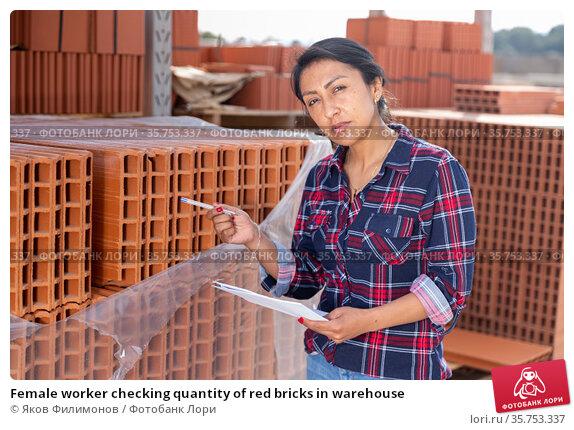Female worker checking quantity of red bricks in warehouse. Стоковое фото, фотограф Яков Филимонов / Фотобанк Лори