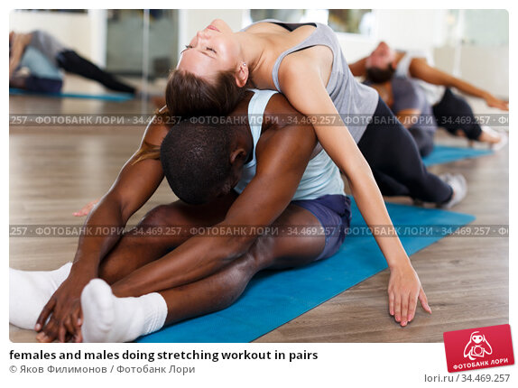 females and males doing stretching workout in pairs. Стоковое фото, фотограф Яков Филимонов / Фотобанк Лори