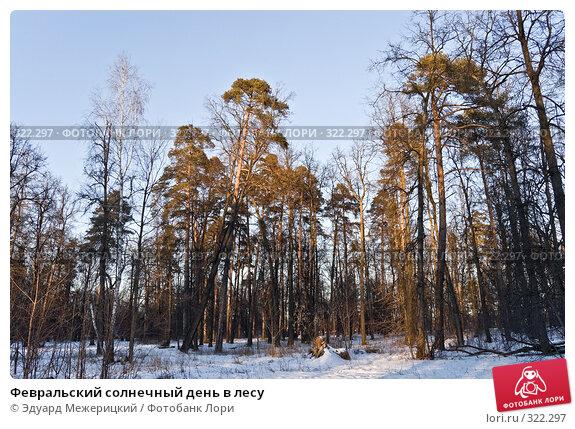 Февральский солнечный день в лесу, фото № 322297, снято 2 января 2008 г. (c) Эдуард Межерицкий / Фотобанк Лори