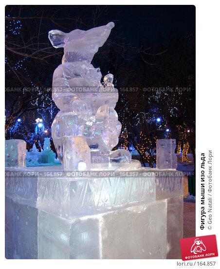 Фигура мыши изо льда, фото № 164857, снято 25 мая 2017 г. (c) Geo Natali / Фотобанк Лори