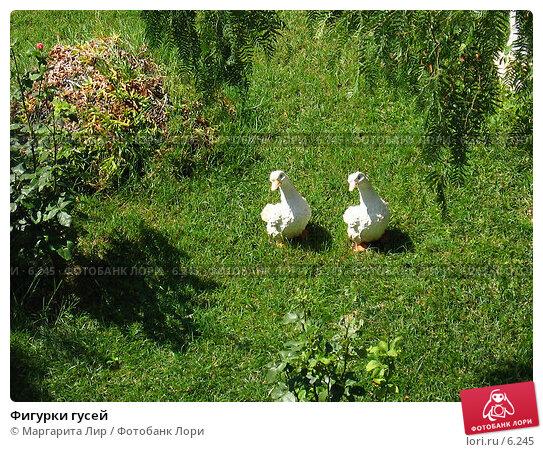 Купить «Фигурки гусей», фото № 6245, снято 12 июля 2006 г. (c) Маргарита Лир / Фотобанк Лори