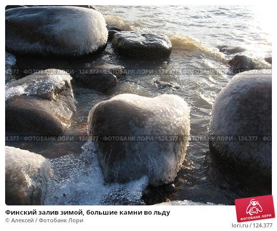 Финский залив зимой, большие камни во льду, фото № 124377, снято 17 ноября 2007 г. (c) Алексей / Фотобанк Лори