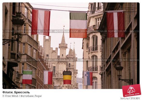 Флаги. Брюссель, эксклюзивное фото № 319901, снято 23 февраля 2017 г. (c) Free Wind / Фотобанк Лори