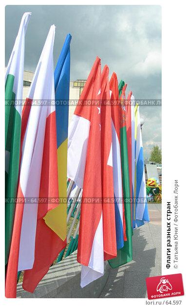 Флаги разных стран, фото № 64597, снято 16 июля 2007 г. (c) Татьяна Юни / Фотобанк Лори