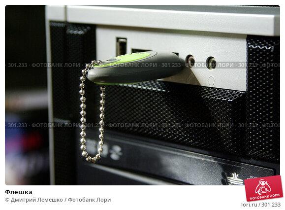 Купить «Флешка», фото № 301233, снято 17 мая 2008 г. (c) Дмитрий Лемешко / Фотобанк Лори
