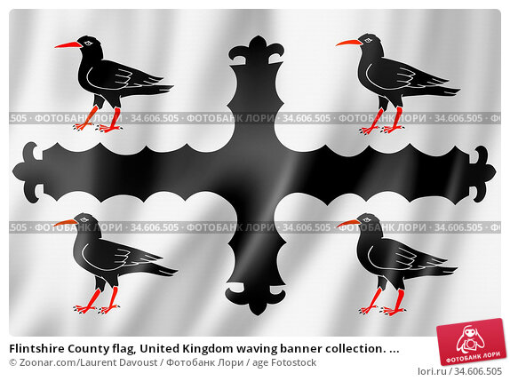 Flintshire County flag, United Kingdom waving banner collection. ... Стоковое фото, фотограф Zoonar.com/Laurent Davoust / age Fotostock / Фотобанк Лори