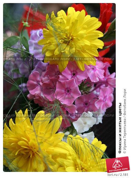 Флоксы и желтые цветы, эксклюзивное фото № 2181, снято 19 августа 2005 г. (c) Ирина Терентьева / Фотобанк Лори