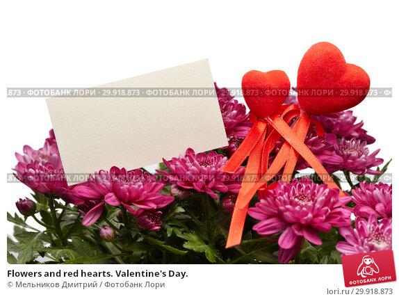 Купить «Flowers and red hearts. Valentine's Day.», фото № 29918873, снято 16 января 2017 г. (c) Мельников Дмитрий / Фотобанк Лори