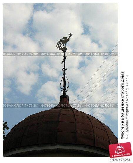 Флюгер на башенке старого дома, фото № 77281, снято 15 августа 2007 г. (c) Людмила Жмурина / Фотобанк Лори