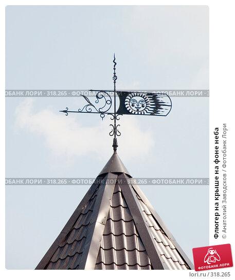 Флюгер на крыше на фоне неба, фото № 318265, снято 24 июня 2006 г. (c) Анатолий Заводсков / Фотобанк Лори