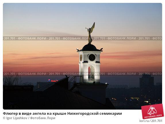 Флюгер в виде ангела на крыше Нижегородской семинарии, фото № 201701, снято 29 октября 2007 г. (c) Igor Lijashkov / Фотобанк Лори