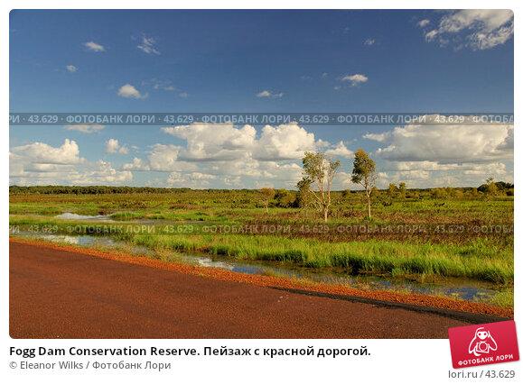 Fogg Dam Conservation Reserve. Пейзаж с красной дорогой., фото № 43629, снято 13 мая 2007 г. (c) Eleanor Wilks / Фотобанк Лори