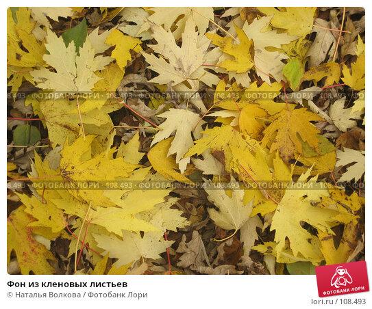 Фон из кленовых листьев, фото № 108493, снято 24 октября 2007 г. (c) Наталья Волкова / Фотобанк Лори
