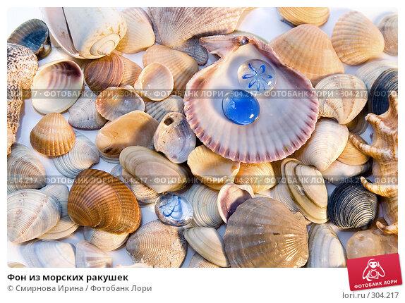 Фон из морских ракушек, фото № 304217, снято 29 мая 2008 г. (c) Смирнова Ирина / Фотобанк Лори