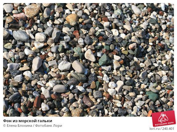 Купить «Фон из морской гальки», фото № 240401, снято 9 августа 2007 г. (c) Елена Блохина / Фотобанк Лори