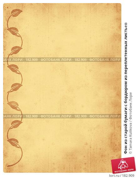 Фон из старой бумаги с бордюром из переплетенных листьев, иллюстрация № 182909 (c) Tamara Kulikova / Фотобанк Лори