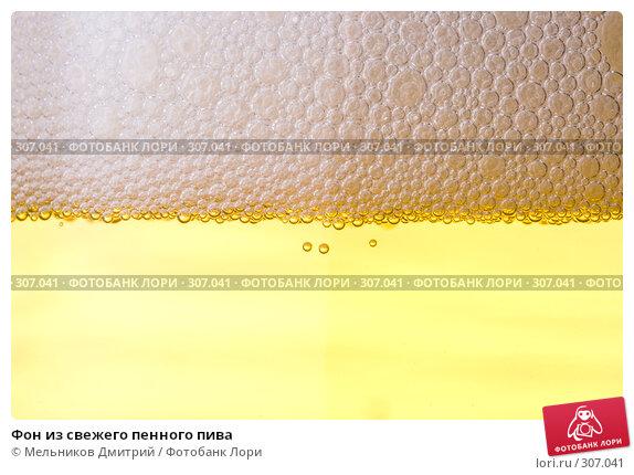 Купить «Фон из свежего пенного пива», фото № 307041, снято 19 апреля 2008 г. (c) Мельников Дмитрий / Фотобанк Лори