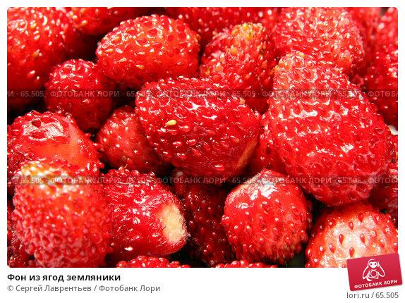Фон из ягод земляники, фото № 65505, снято 22 июля 2007 г. (c) Сергей Лаврентьев / Фотобанк Лори