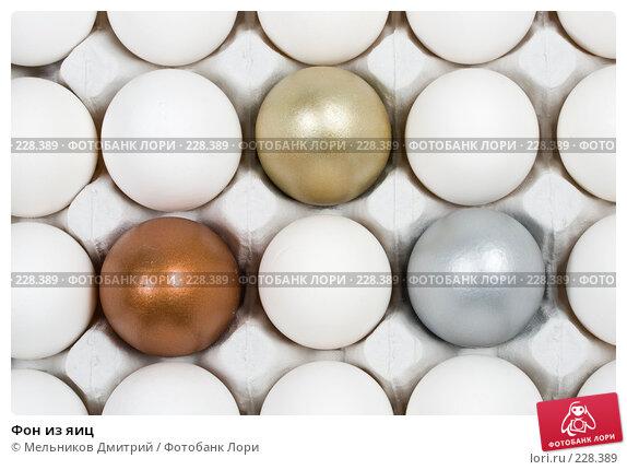Купить «Фон из яиц», фото № 228389, снято 10 марта 2008 г. (c) Мельников Дмитрий / Фотобанк Лори