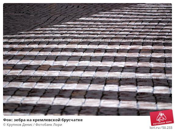 Фон: зебра на кремлевской брусчатке, фото № 50233, снято 23 марта 2007 г. (c) Крупнов Денис / Фотобанк Лори