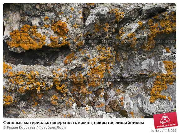 Купить «Фоновые материалы: поверхность камня, покрытая лишайником», фото № 113029, снято 30 июля 2007 г. (c) Роман Коротаев / Фотобанк Лори