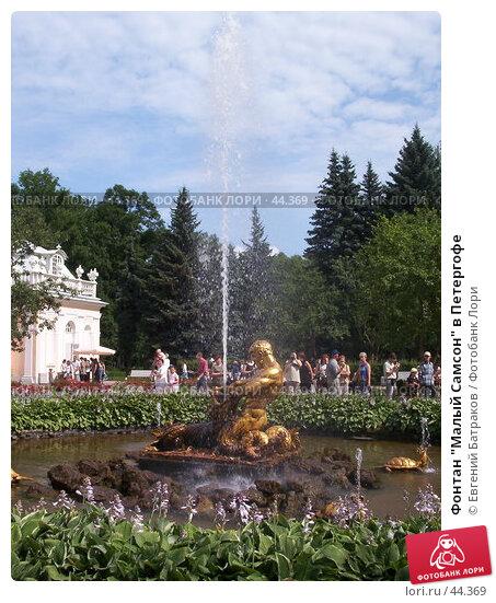 """Фонтан """"Малый Самсон"""" в Петергофе, фото № 44369, снято 26 июля 2003 г. (c) Евгений Батраков / Фотобанк Лори"""