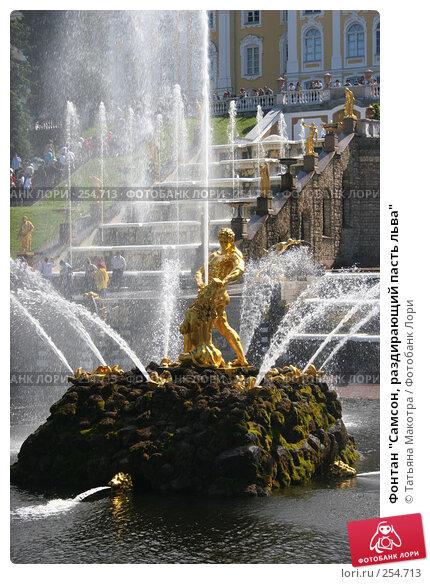 """Купить «Фонтан """"Самсон, раздирающий пасть льва""""», фото № 254713, снято 16 июня 2006 г. (c) Татьяна Макотра / Фотобанк Лори"""