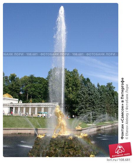 Фонтан «Самсон» в Петергофе, фото № 108681, снято 6 августа 2004 г. (c) Efanov Aleksey / Фотобанк Лори